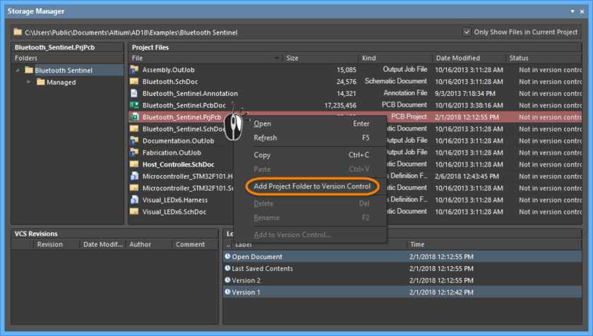Storage Manager panel, adding the selected project to version control via the right-click menu