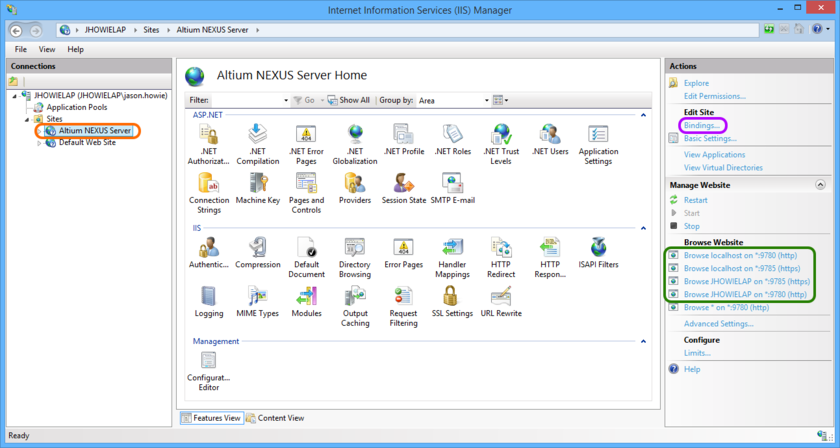 Access configuration and server binding settings for the Altium NEXUS Server.