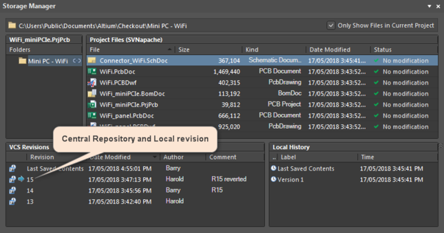 The Central Repository and Local revision in the Storage Manager